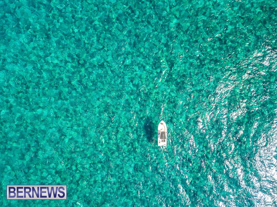 397 - Floating above the turquoise waters
