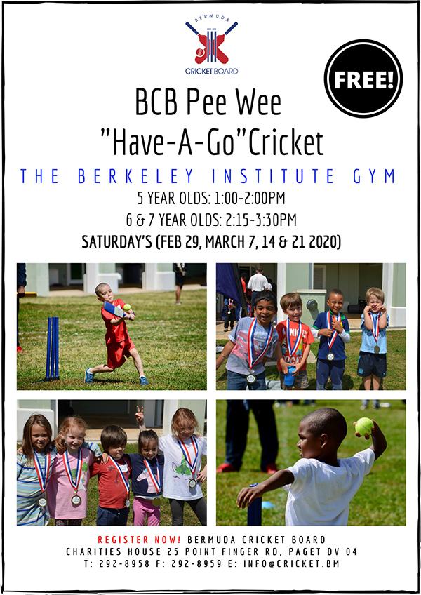 2020 Pee Wee Cricket - Flyer