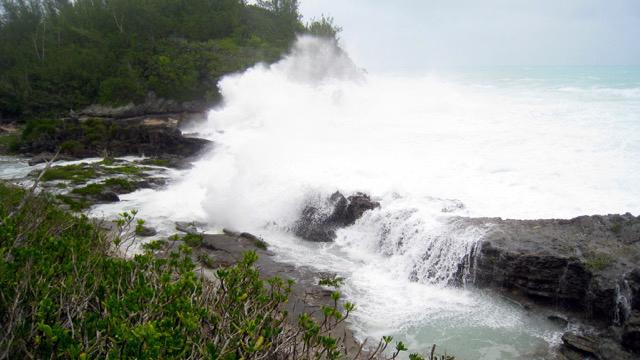 Bermuda Environmental Sustainability Taskforce Feb 2020