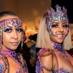 Nova Mas Carnival Costume Launch Feb 2020 (11)