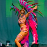 Nova Mas Carnival Costume Launch Feb 2020 (26)