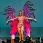 Nova Mas Carnival Costume Launch Feb 2020 (27)