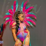 Nova Mas Carnival Costume Launch Feb 2020 (29)
