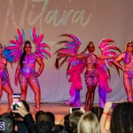 Nova Mas Carnival Costume Launch Feb 2020 (31)