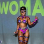 Nova Mas Carnival Costume Launch Feb 2020 (32)