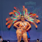 Nova Mas Carnival Costume Launch Feb 2020 (37)