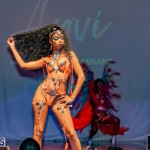 Nova Mas Carnival Costume Launch Feb 2020 (41)