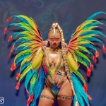 Nova Mas Carnival Costume Launch Feb 2020 (46)