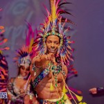 Nova Mas Carnival Costume Launch Feb 2020 (57)