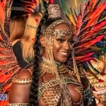 Nova Mas Carnival Costume Launch Feb 2020 (6)