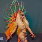 Nova Mas Carnival Costume Launch Feb 2020 (60)