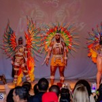 Nova Mas Carnival Costume Launch Feb 2020 (65)
