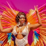 Nova Mas Carnival Costume Launch Feb 2020 (67)