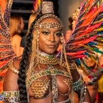 Nova Mas Carnival Costume Launch Feb 2020 (7)