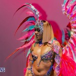 Nova Mas Carnival Costume Launch Feb 2020 (71)