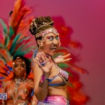 Nova Mas Carnival Costume Launch Feb 2020 (74)