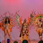 Nova Mas Carnival Costume Launch Feb 2020 (79)