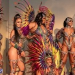 Nova Mas Carnival Costume Launch Feb 2020 (90)