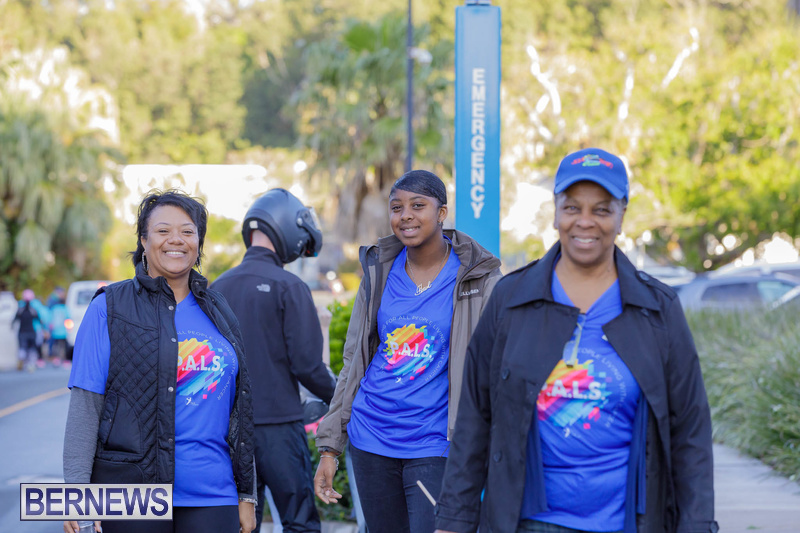 PALS walk charity Bermuda Feb 2020 (13)