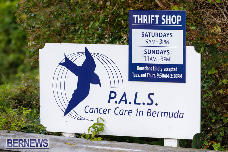 PALS walk charity Bermuda Feb 2020 (3)