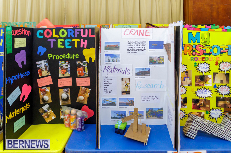 Purvis Primary School Science Fair Bermuda Feb 2020 (12)