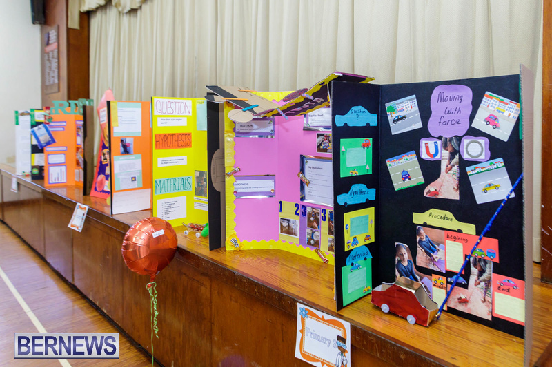 Purvis Primary School Science Fair Bermuda Feb 2020 (13)