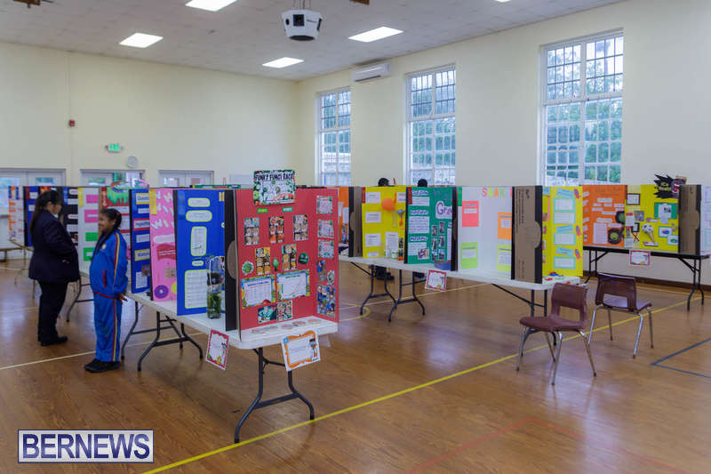 Purvis Primary School Science Fair Bermuda Feb 2020 (15)