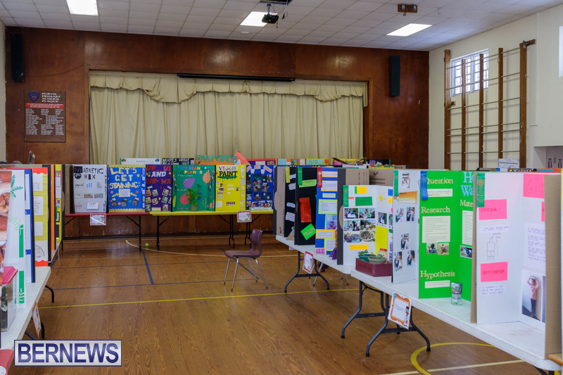 Purvis Primary School Science Fair Bermuda Feb 2020 (5)