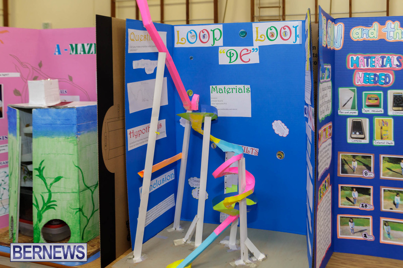 Purvis Primary School Science Fair Bermuda Feb 2020 (7)