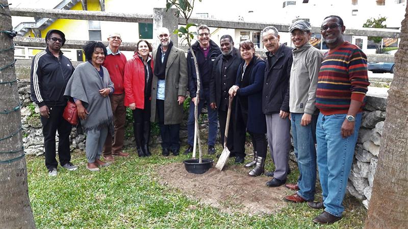 X-Roads Tree of Peace & Reconciliation Bermuda Feb 2 2020