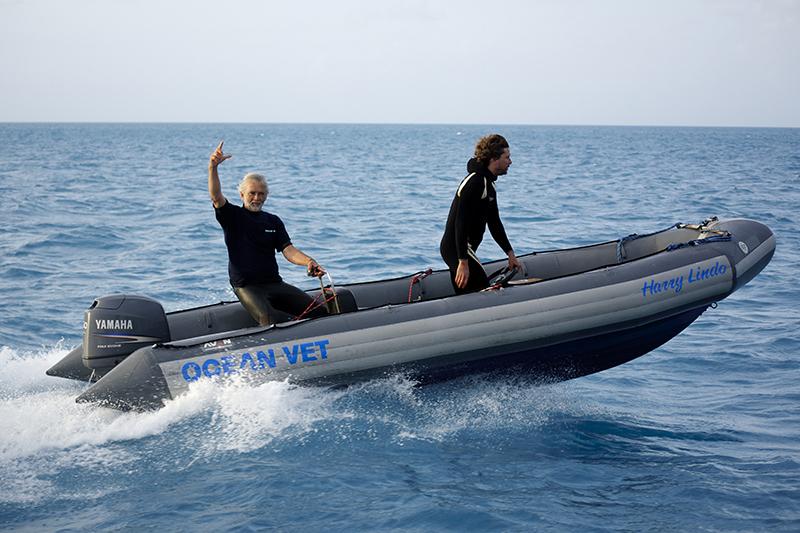 Secret Episode Of Ocean Vet Bermuda April 2020 (1)