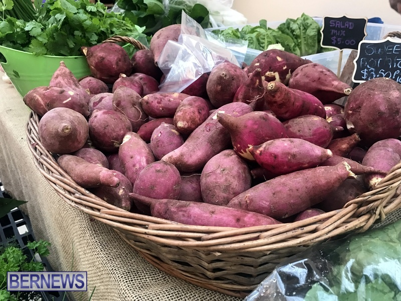 2020 Bermuda Farmers Market at Botanical Gardens Jan 4 (3)