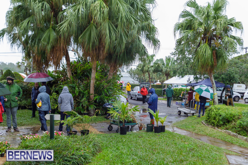 BNT Bermuda National Trust Plant Bake Sale Feb 2020 (7)