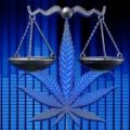 PLP: Cannabis Bill Heads To Senate, Governor