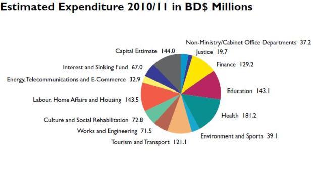 bermuda budget 2010 chart