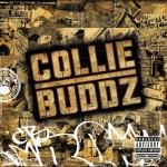 collie buddz album