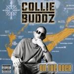 collie buddz on the rock
