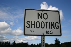 445539_no_shooting
