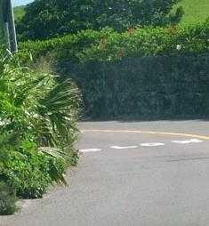 bermuda road 2