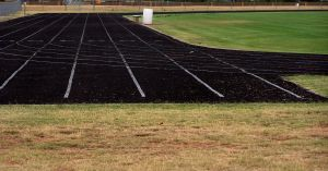 197834_track_and_field