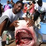 tiger shark july 2010 (9)