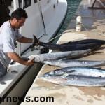 wahoo fish tourn 2010 (7)