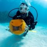 bermuda underwater halloween 2010 (12)