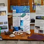 BIOS Marine Science Day Nov20 10-1-7