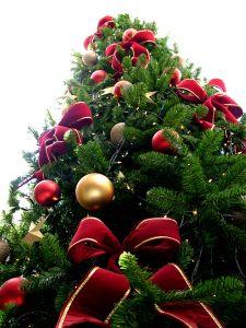 223106_christmas_tree