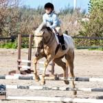 Junior Extravaganza Show Bermuda Equestrian Federation Mar 5th 2011-1-3