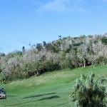 Tuckers Point Rosewood Walk - Bermuda Mar 6th 2011-1-20
