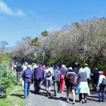 Tuckers Point Rosewood Walk - Bermuda Mar 6th 2011-1-3