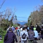 Tuckers Point Rosewood Walk - Bermuda Mar 6th 2011-1-4