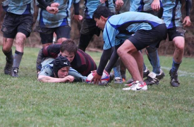 bermuda rugby april canada (4)